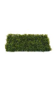 bosso mattonella 40x60 verde